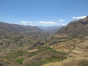 Peru17